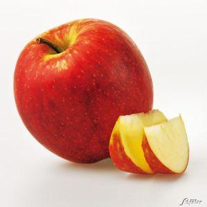 Apfelbusch 'Jonagold' Winterapfel