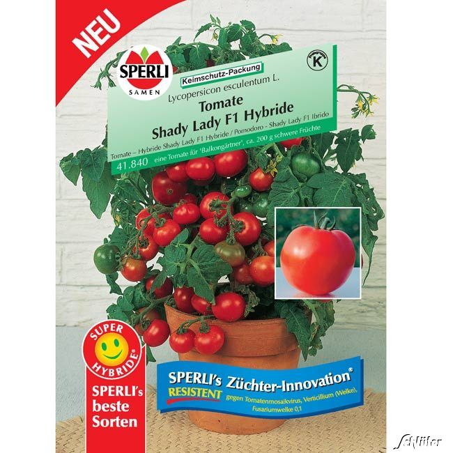 Tomate Sperlings 'Shady Lady'
