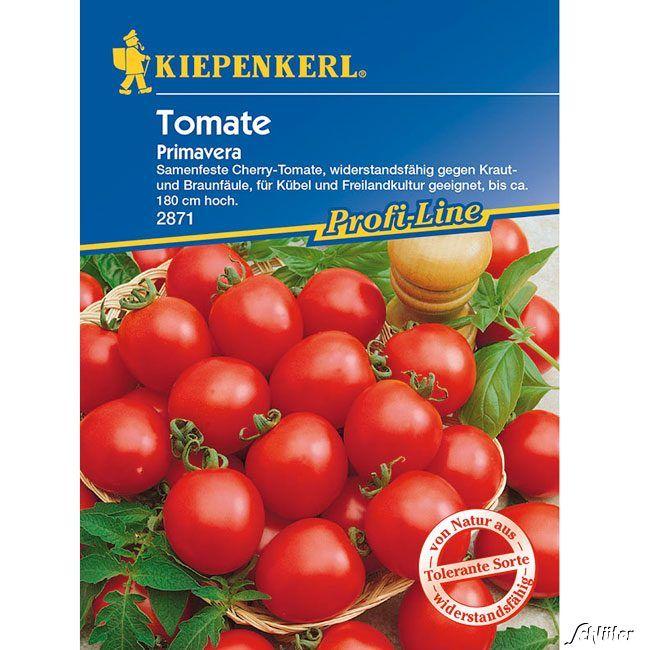 Tomaten (Cherry) 'Primavera'