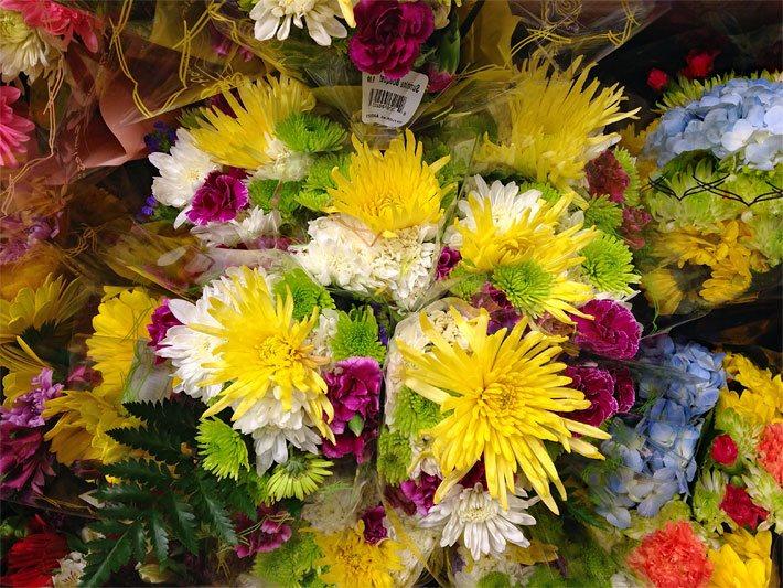 Schnittblumen  Die Schnittblume