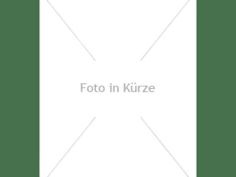 gartenbrunnen modernes design online shop und fachgeschäft für exklusive gartenbrunnen
