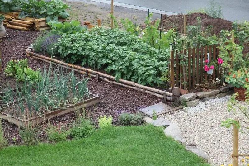 beet mit kies gestalten | moregs, Garten und erstellen
