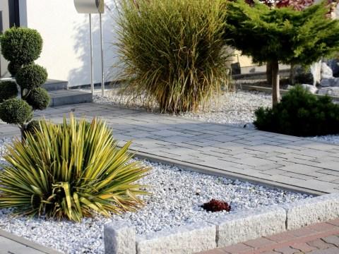 pflanzen für steingarten steingarten bepflanzen » schöne auswahl an gehölzen, blumen
