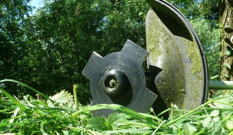 Motorsense-Rasen
