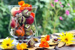 Terrasse Im Herbst – 5 Pfiffige Dekorationsideen