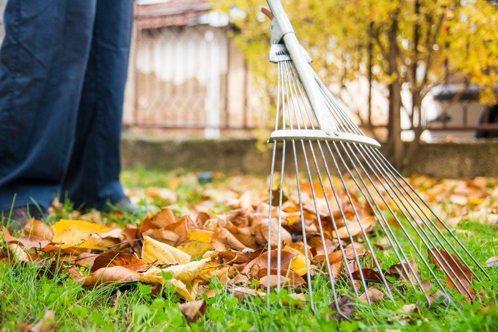 Garten winterfest machen diese Arbeiten stehen jetzt an