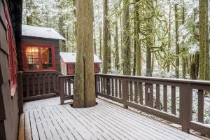 Mt Hood Cabin in The Woods
