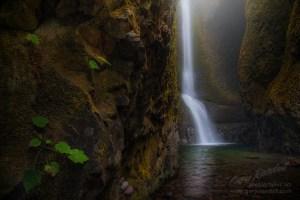 Oneonta Falls