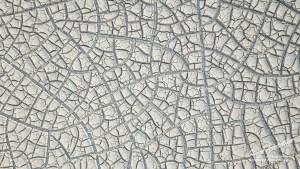 Alvord Desert Playa Mud Tiles