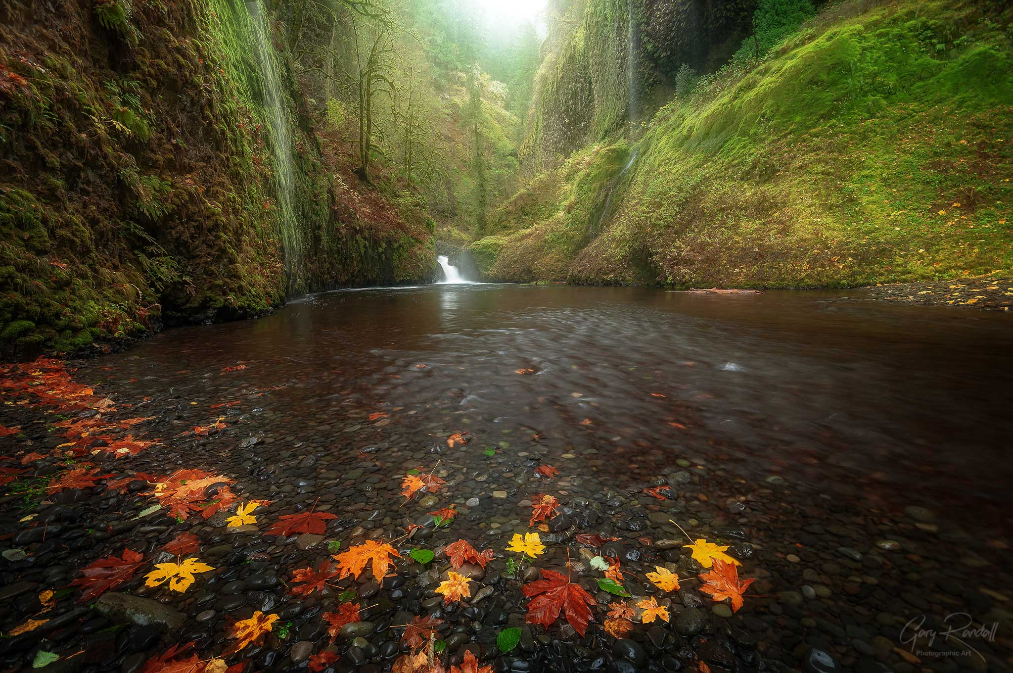 Weeping Walls Columbia River Gorge, Oregon
