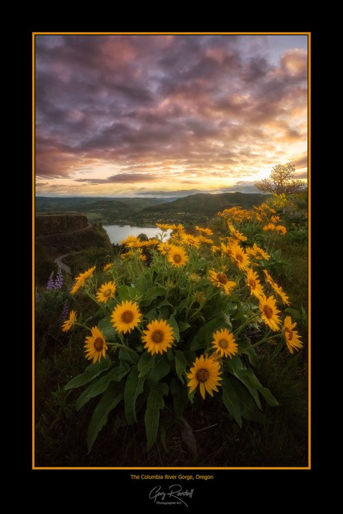 Gary Randall Landscape Photography Posters