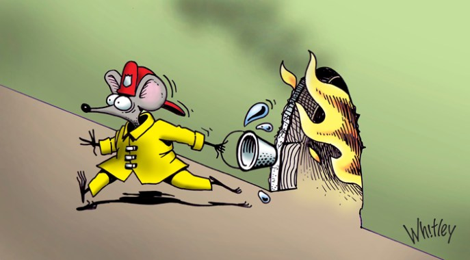 Mouse fire by Gary Whitley.
