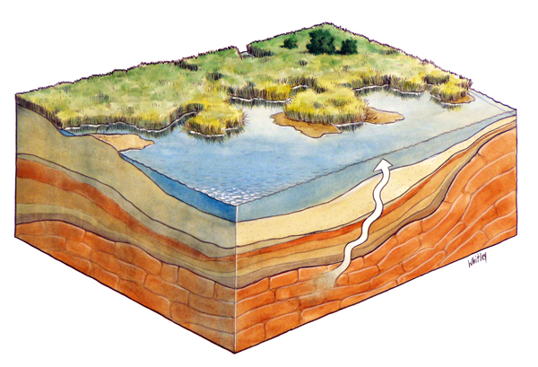 Aquifer and groundwater. Watercolor. Gary Whitley.