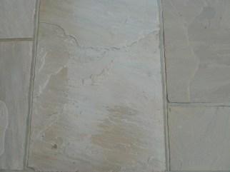 Forest glen sandstone