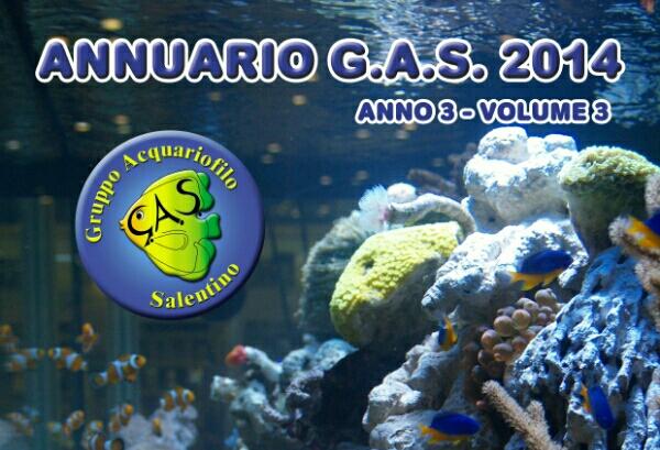 ANNUARIO GAS 2014