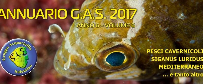 ANNUARIO GAS 2017
