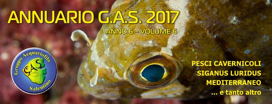banner ANNUARIO GAS 2017