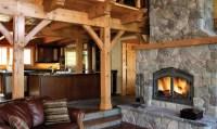 Napoleon NZ6000 Wood Burning Fireplace