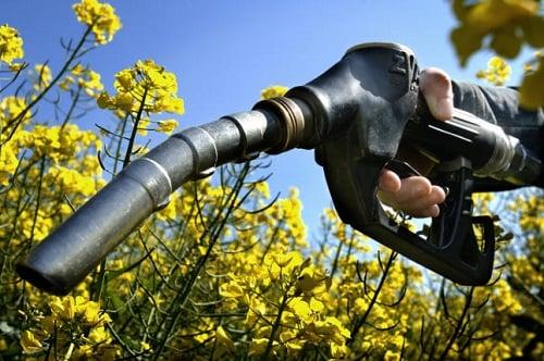 El consumo de combustibles de automoción registra su mejor mes de mayo desde 2010 con el autogas GLP a la cabeza