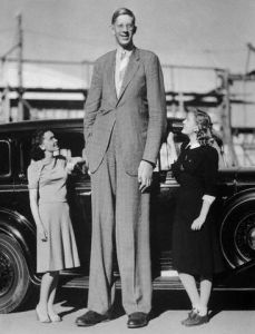 Actresses Maureen O'Sullivan and Ann Morris stand next to giant Robert Wadlow. Wadlow was eight feet, eight and one half inches tall at the time this photo was taken. At the time of his death he was eight feet, eleven inches tall. ca. 1938 Hollywood, California, USA