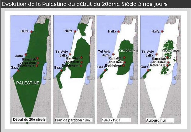 EvolutionPalestine