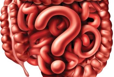 diarrhea predominant irritable bowel