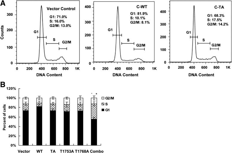 Hepatitis B Virus Core Promoter Mutations Contribute to
