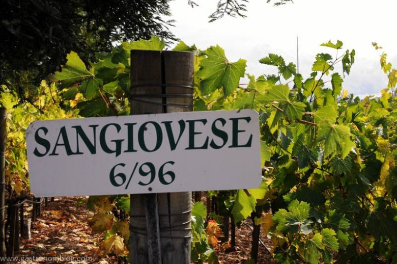 Napa Is Open And Needs You The GastroNom - 6 awesome boutique wineries to visit in napa
