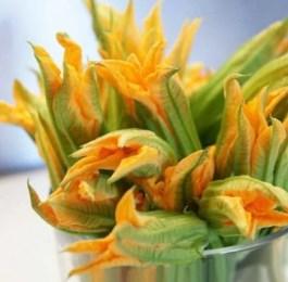 Bouquet de fleurs de courgettes