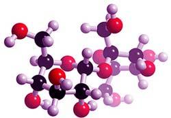 molécula de sacarosa