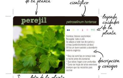 Información y leyenda de las fichas de plantas aromáticas
