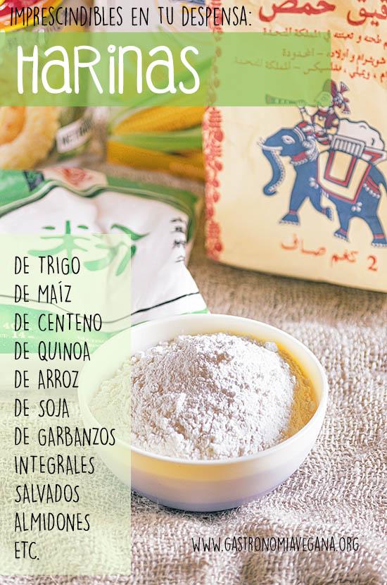 Alimentos imprescindibles en una despensa vegana: harinas -- GastronomiaVegana.org