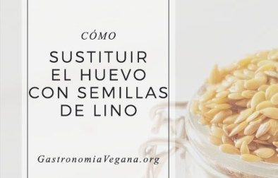 Cómo sustituir el huevo con semillas de lino - Tutorial de GastronomiaVegana.org