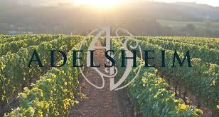 adelsheim vineyards