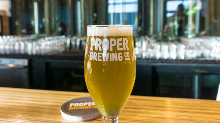 proper brewing gose style beer