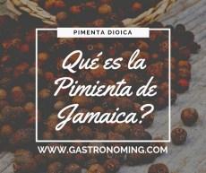"""¿Qué es la Pimienta de Jamaica"""""""