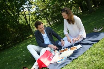 Picknick im Prater Praterfee