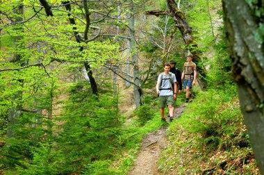 Natur-Abenteuer in den Nationalparks Die Wildnis in den Kalkalpen