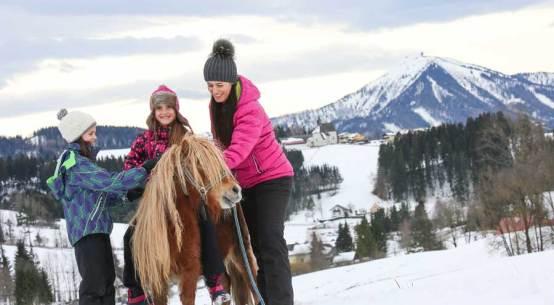 Niederösterreichs Tourismus verzeichnet Rekordjahr