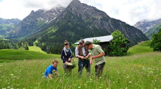 Vorarlberg im Herbst entdecken genießen und wandern