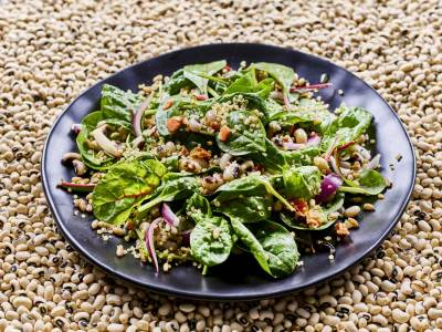 Plant Based Ernährung