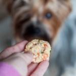 Gluten Free Doggie Treats