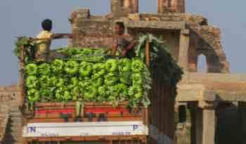 HAMPI INDIA DELIVERY