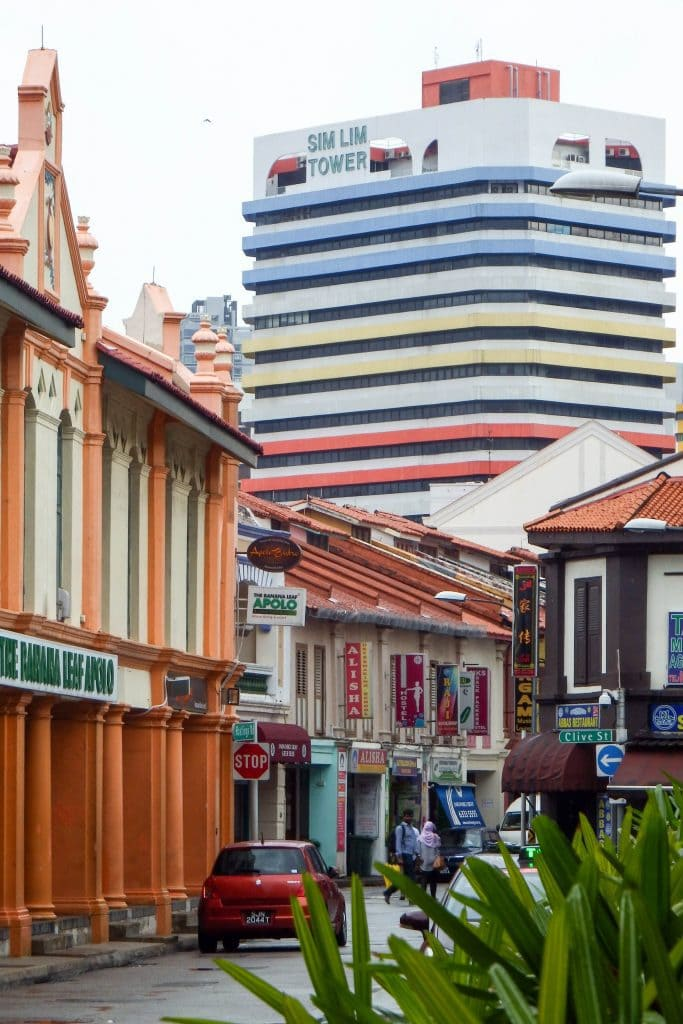 #singapore #seasia  #travel  #sightseeing  #travelguide  #asia #littleindia  #architecture  #shopping #hawkercentre  #market  #streetart #streetfood