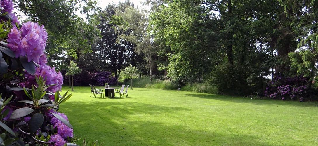 Kijkje in de tuin