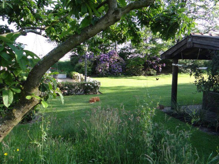 Zicht op de tuin