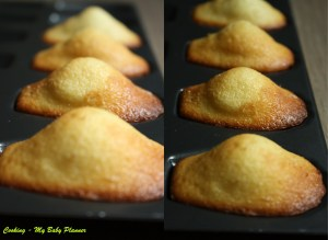 Madeleine de Commercy al limone - Cooking - My Baby Planner