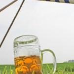 Frühschoppen unterm Maibaum Bierglas Bierhumpen