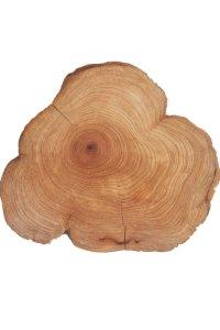 Cedarwood Juniperus virginiana