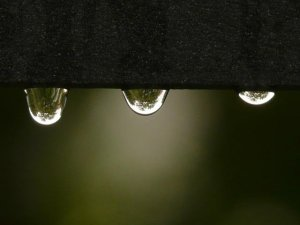 Rainwater Harvesting - A Gift From The Sky